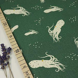 Bio Canvas Baumwolle Octo School grün von Birch Fabrics
