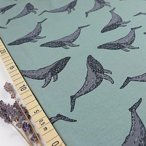 Bio Jersey Whales in Iceberg Green von Bloome Copenhagen