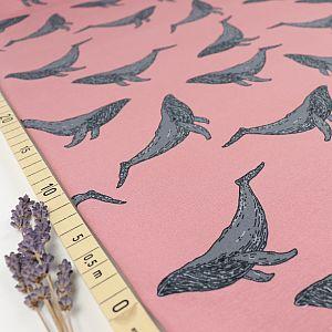 Bio Sommersweat Whales in old rose von Bloome Copenhagen