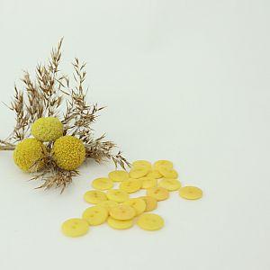 Bio Knopf Echt Steinnuss 12mm Aspen Gold seidenmatt
