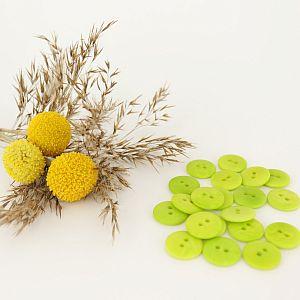 Bio Knopf Echt Steinnuss 15mm hellgrün matt