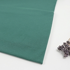 Organic Single Stretch Jersey in Chalky Green von mind the MAKER