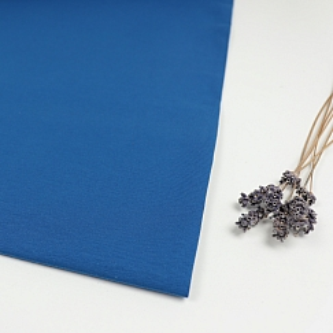 Organic Single Stretch Jersey in Intense Blue von mind the MAKER